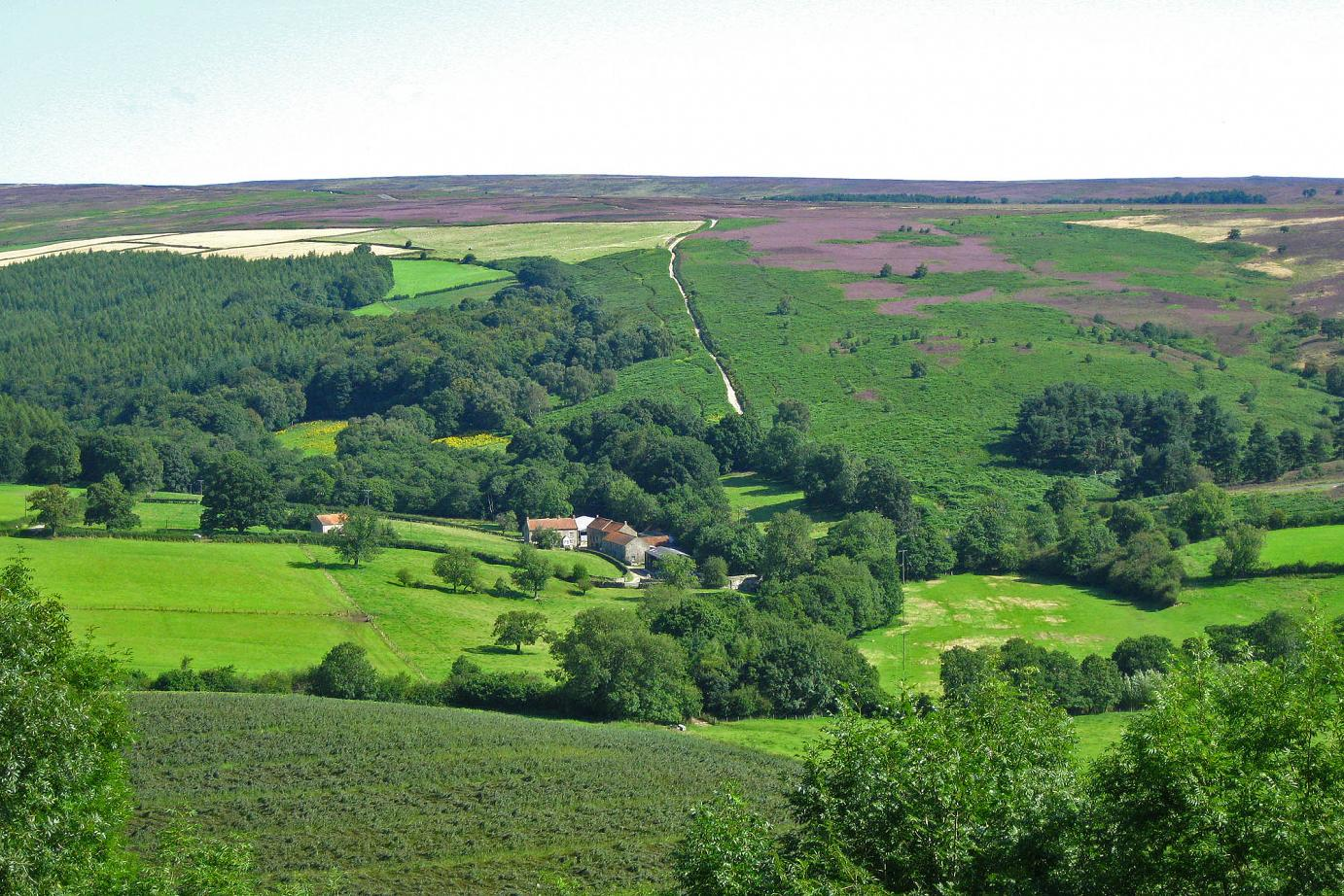 Hutton-le-Hole cottage for 4 with 2 bedrooms in North York Moors National Park